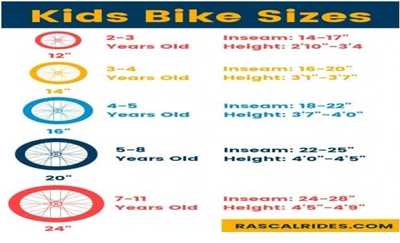Image of wheel size base on age