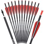 Image of Black Eagle Executioner Fletched 20-inch Crossbow Carbon Bolts