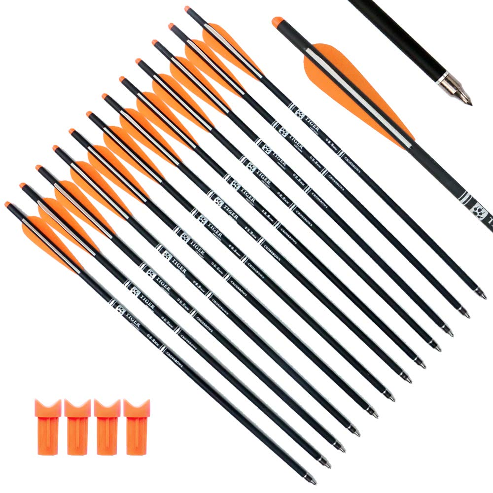 "Image of Tiger Archery 12 Pack – Hunting Archery 20"" Bolts"