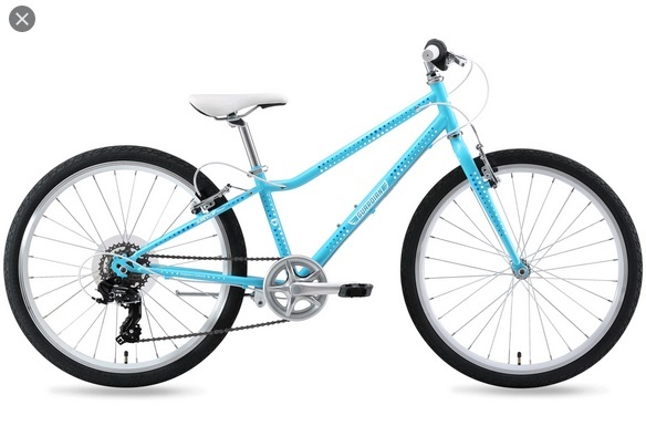 Image of Guardian 24-Inch Bikes For 11-Year-Old-Girls